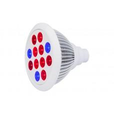 Cirrus Evo  E27 LED Grow Bulb