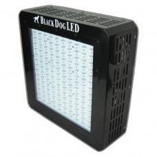 Black Dog LED BD450-U