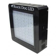 Black Dog LED BD700-U